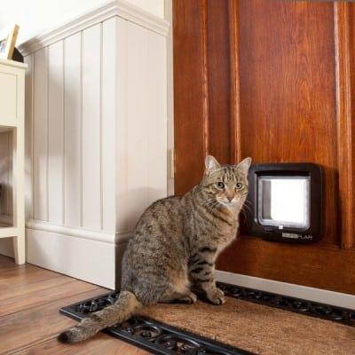 Elektronische Katzenklappe